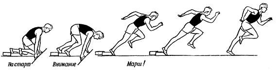 Бег на короткие дистанции спринт